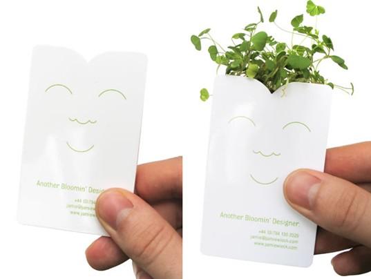 zielona-kartka-1