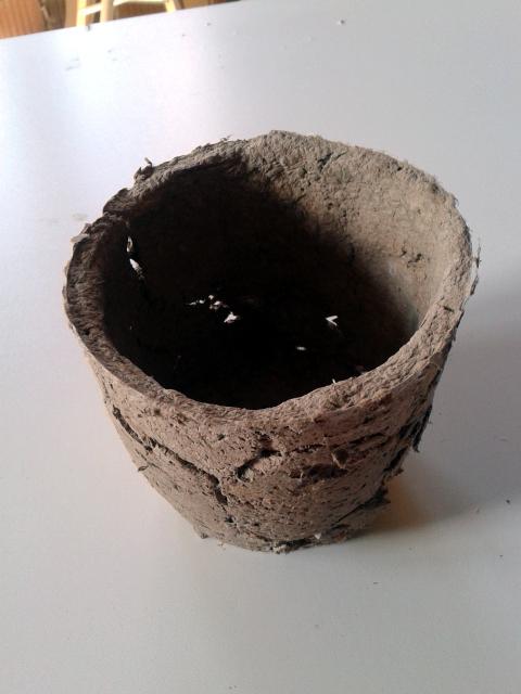 tekturowa-ceramika-oslonka-3