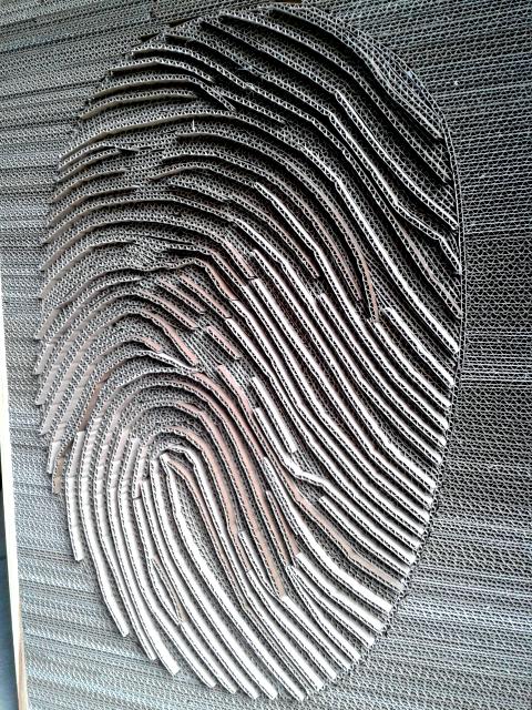 linie-papilarne-z-kartonu-3
