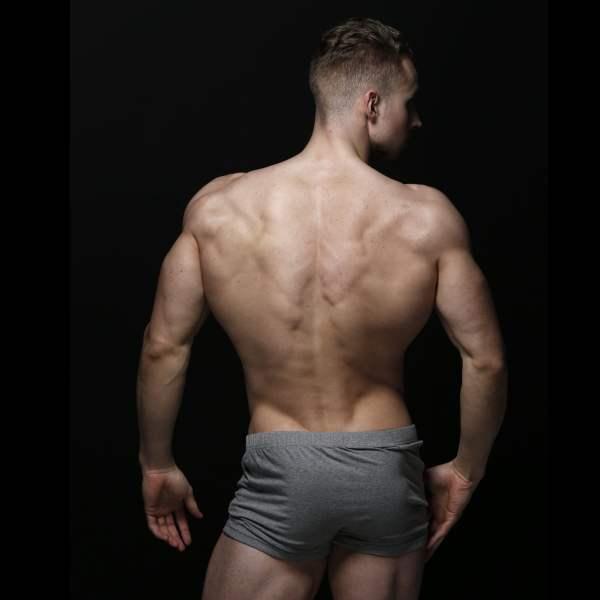 zlc-grey-boxer-back