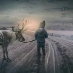 Pomen sanj   Kaj pomeni sanjati sneg?