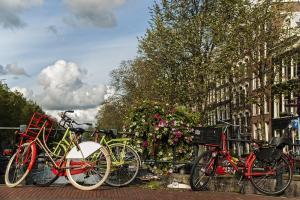 מדריך אמסטרדם למתחילים