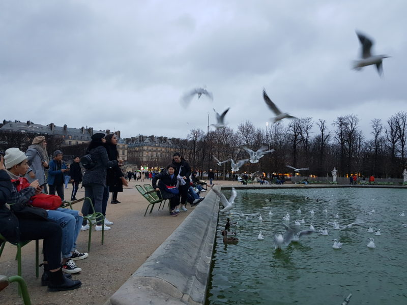 פריז בחורף