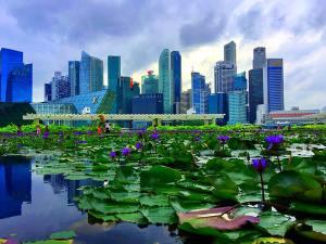 טיול לסינגפור