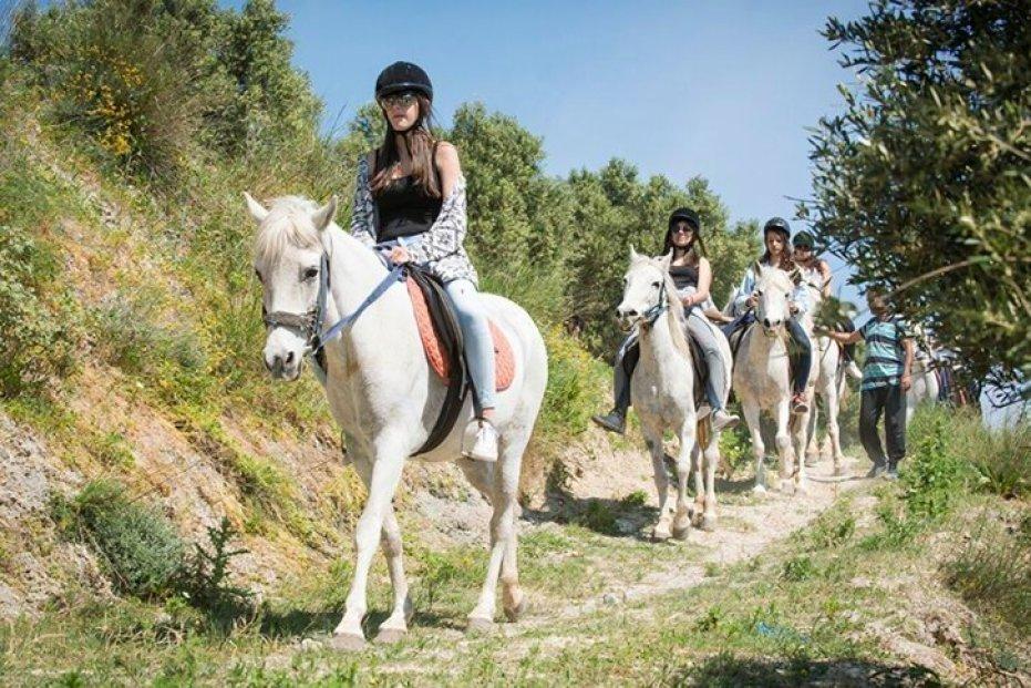 רכיבה על סוסים בגרתים