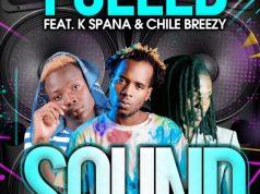 "DOWNLOAD Mp3 Y Celeb Ft K Spanna & Chile Breezy - ""Sound"""