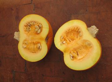 split pumpkin