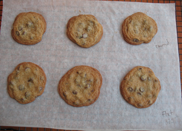 Chocolate Chip Cookies on Baking Sheet | ZoëBakes | Photo by Zoë François