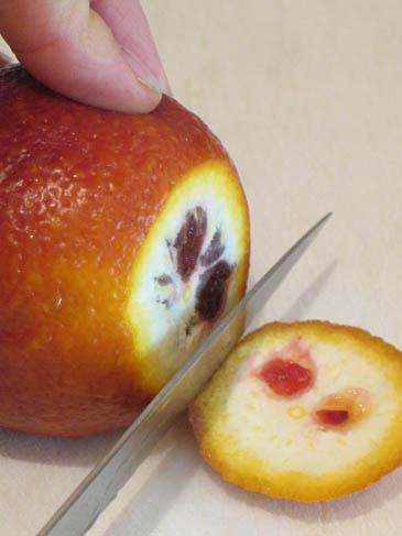 Slicing Blood Orange | ZoëBakes | Photo by Zoë François