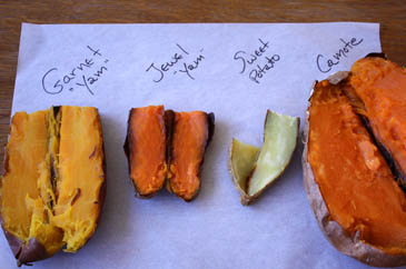 Comparing sweet potatoes and yams in the sweet potato vs yam debate
