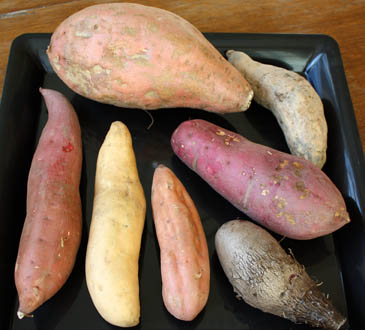 "7 different types of sweet potatoes and ""yams""   Sweet potato vs yam debate"