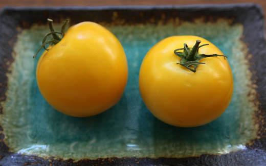 Yellow tomatoes | ZoëBakes | Photo by Zoë François