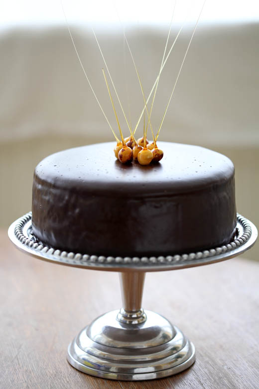 Chocolate glazed praline cheesecake with candied hazelnuts | ZoëBakes | Photo by Zoë François