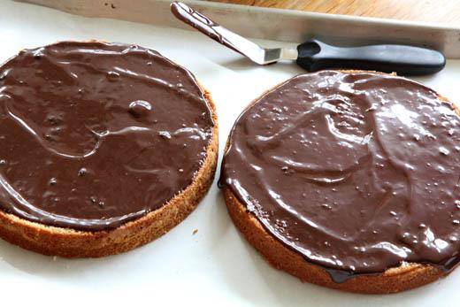 Coconut cake spread with chocolate ganache | ZoëBakes | Photo by Zoë François