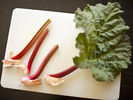 Fresh cut rhubarb | ZoëBakes | Photo by Zoë François