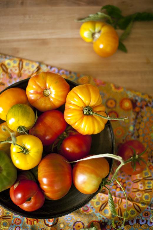Heirloom Tomatoes | ZoëBakes | Photo by Zoë François