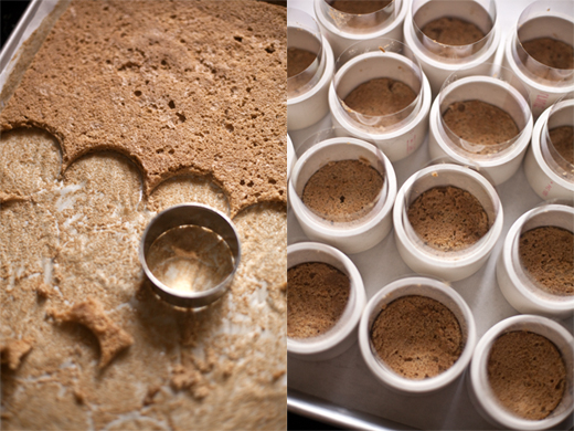 Mold for Tiramisu | photo by Zoë François
