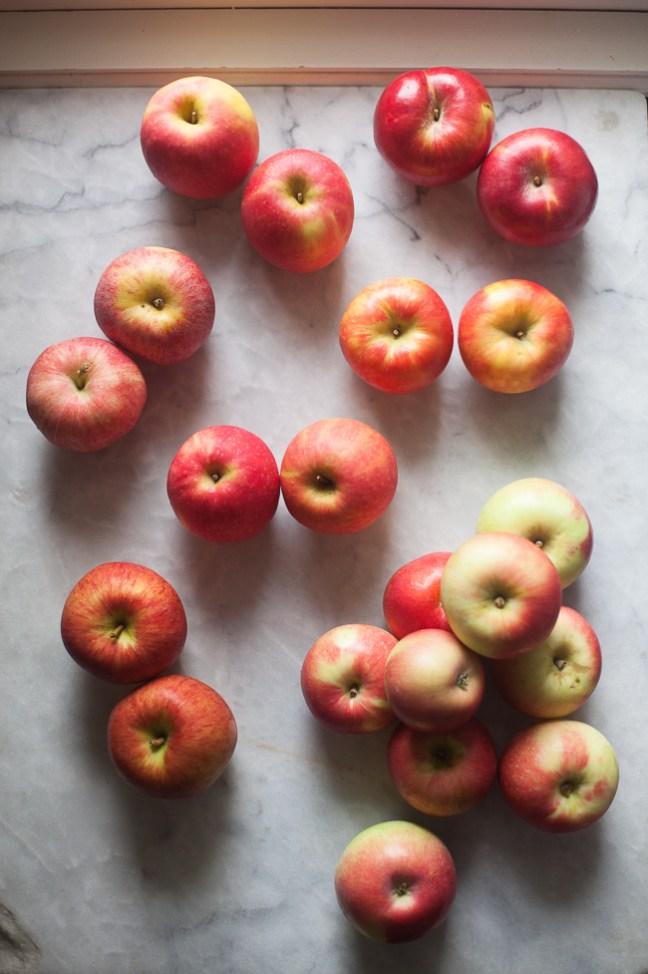 Apple Sauce Galette | ZoeBakes photo by Zoë François