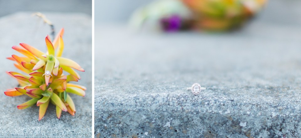 engagement ring details with succulent plants at port view park at sunset