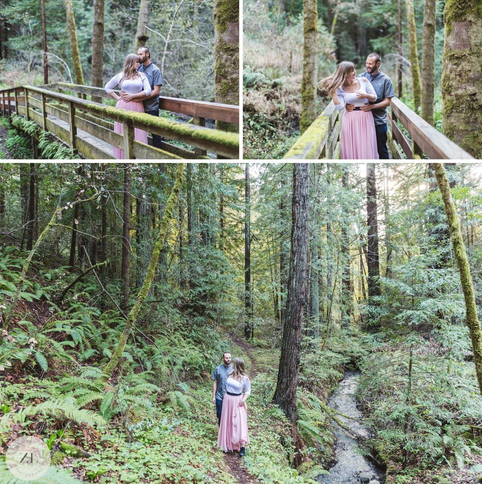 engagement photos in the redwoods in san mateo county ca