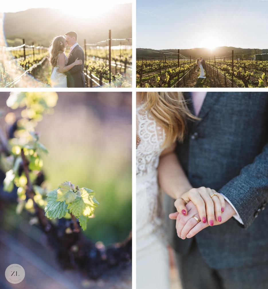 wide shots of couple in vineyard on wedding day