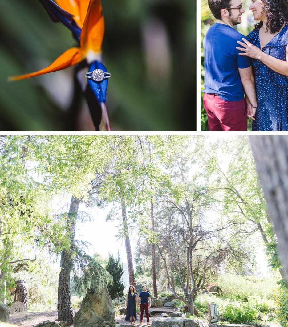 oakland engagement session with bird of paradise flower with engagement ring