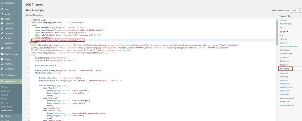 screenshot showing back end of wordpress website and the header.php section of the theme files