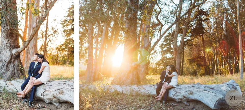 relaxed wedding couple sitting on fallen tree in San Francisco's presidio near Wood Line