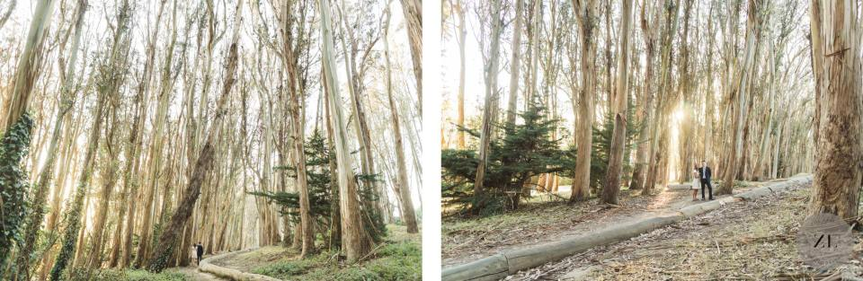 Epic wide shots of the Lovers Lane location nestled in San Francisco's Presidio