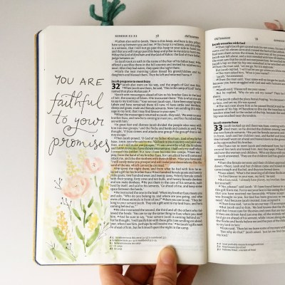 Sitting in truth | reading the Bible
