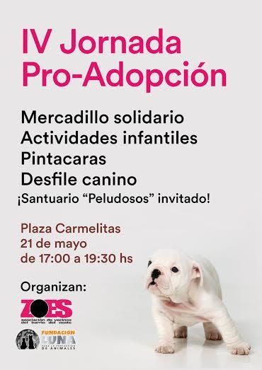 cartel Jornada Preadopción 2016