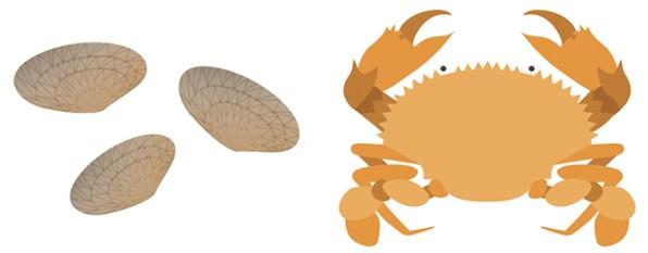 700.crab_clam