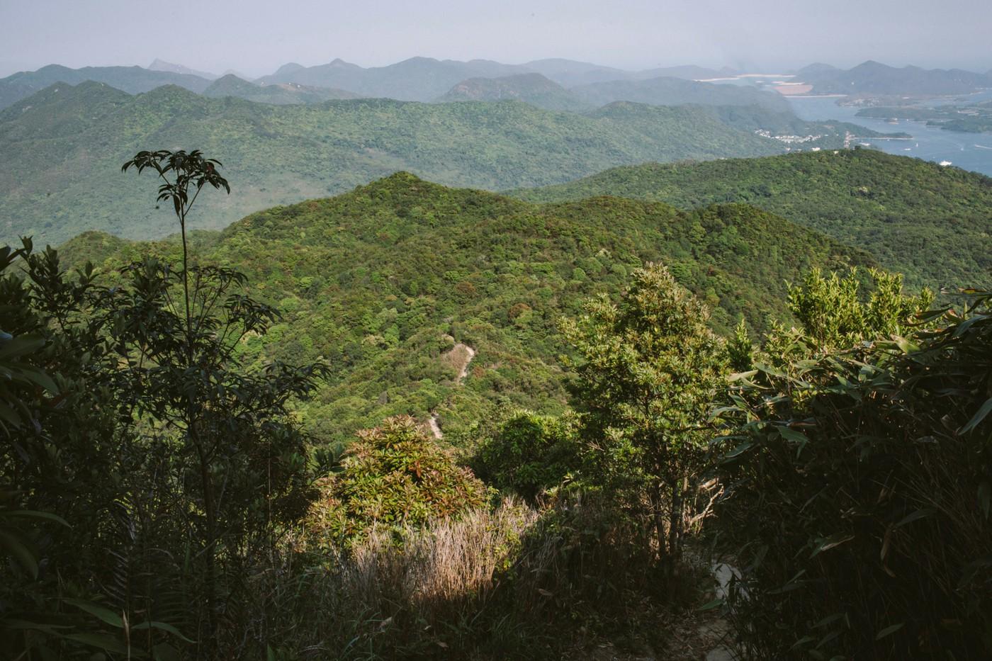 d2265bd3a Hiking Through Hong Kong's History in Ma On Shan