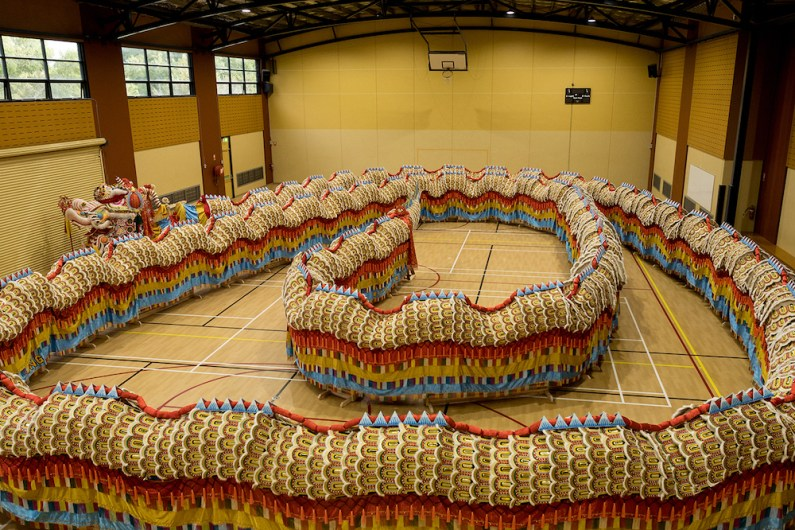 Dai Gum Loong waits to be awakened inside a school gymnasium. He is the longest imperial dragon in the world at 125m with 7000 individual scales.