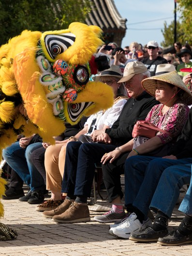 Capering lions delight the crowds at Bendigo's Easter Parade and Dragon Awakening ceremony.