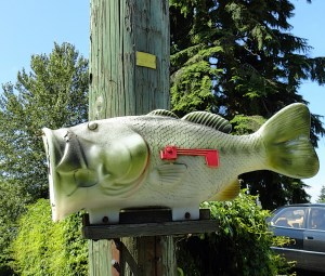 FishMailbox
