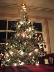 tree7b