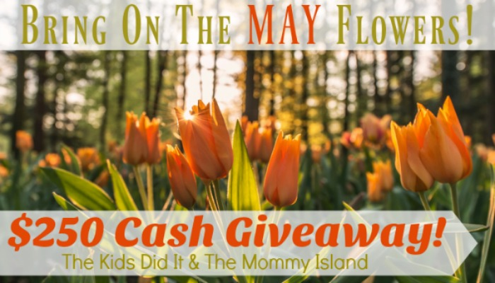 may cash giveaway