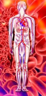 Zombie Blood Flow