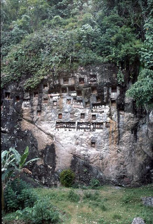 Toraja_Tombs2