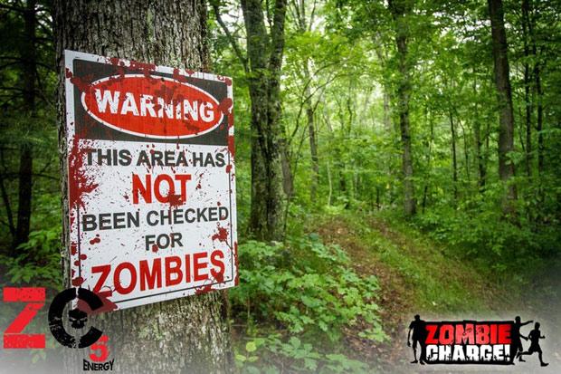 zombiechargeimage2