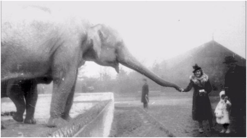 Čuvar zoološkog vrta i njegova žena – priča o altruizmu za vrijeme Holokausta