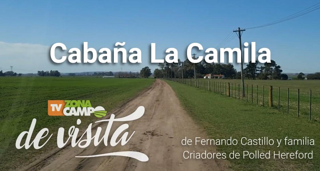 ZonaCampo de visita: Cabaña La Camila