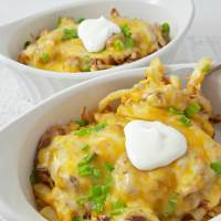 BBQ Pulled Pork Fries Recipe - great dinner, lunch, or appetizer