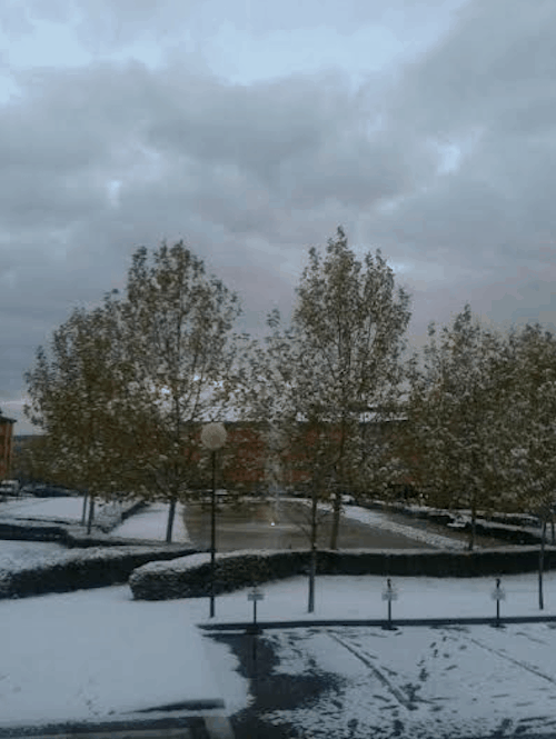 Nieve en Pozuelo - F. Larrea