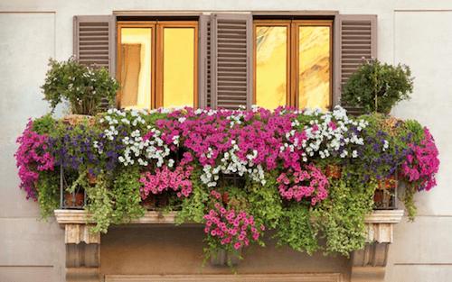 balcones-barrio-letras