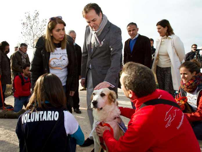 perro-abandonado-madrid