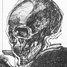 7 skulls ink detail 2