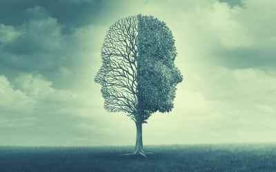 Connaître son profil émotionnel pour plus de confiance en soi