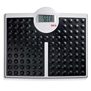 Seca-813-Robust-Flat-Scale-Electronic-Black